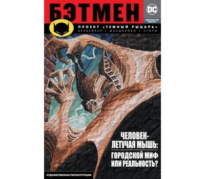 Бэтмен. Проект Темный рыцарь