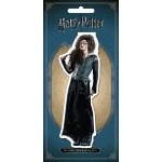 Магнитная закладка Беллатриса Лестрейндж (Гарри Поттер)